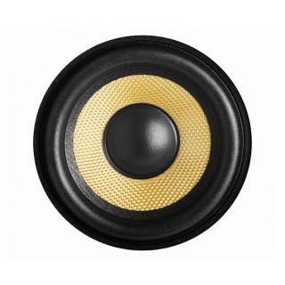 gold_speaker
