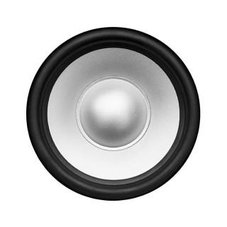 Silver_speaker